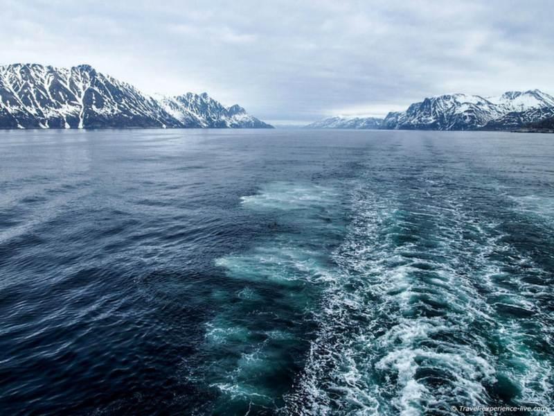5-arcticocean